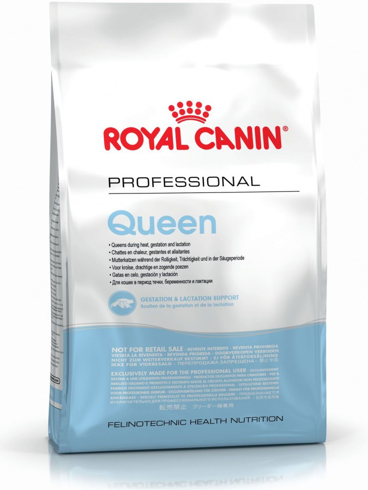 Queen Royal Canin