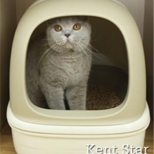 Биотуалет для кошек